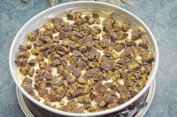 Chocolate Peanut Butter Cheesecake by 3glol.net